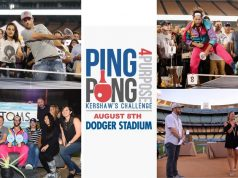 Ping Pong 4 Purpose image